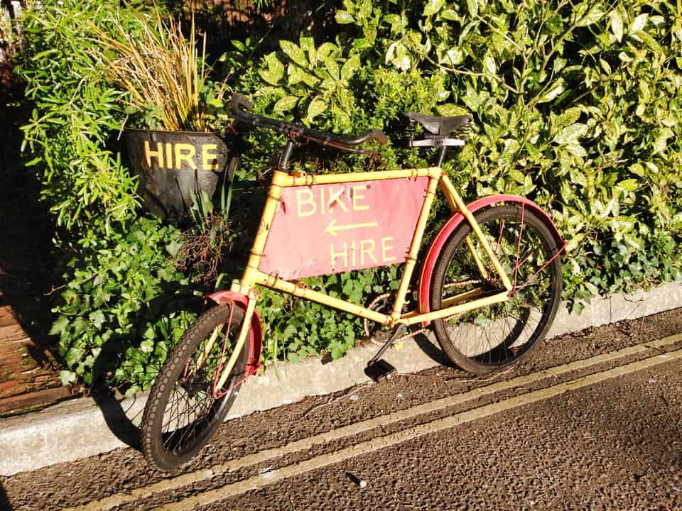 New Forest Bike Hire