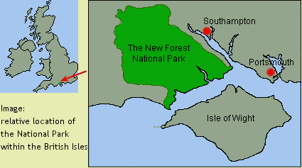 New Forest National Park location. http://bit.ly/1eKR1HR