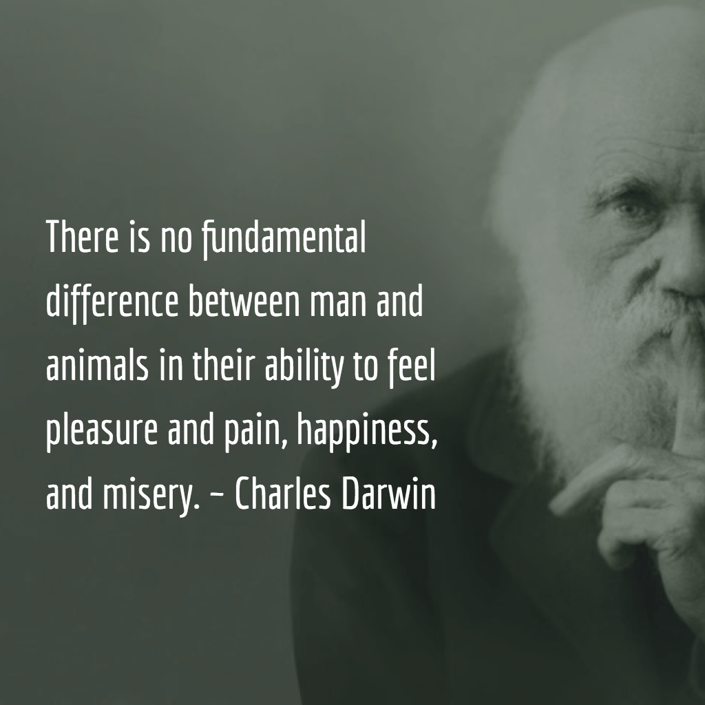 Darwin Quotes: 4 Secrets To Staying Healthy While On The Road