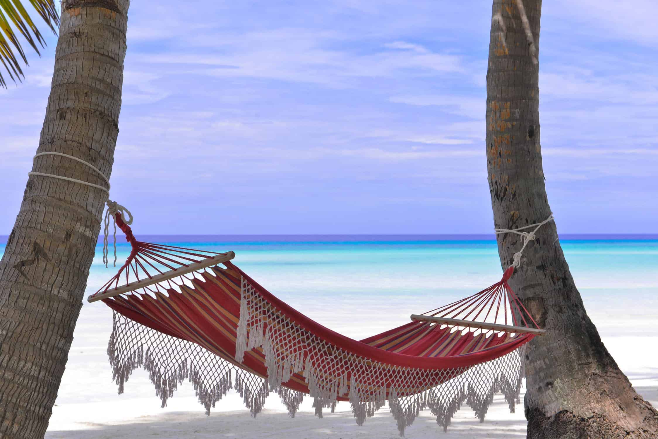 white sandy beach and a hammock overlooking the ocean